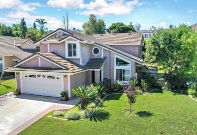 Moorpark Single Family Home For Sale: 12944 Sleepy Wind Street