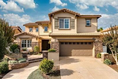 Ventura County Single Family Home For Sale: 9623 Rio Grande Street