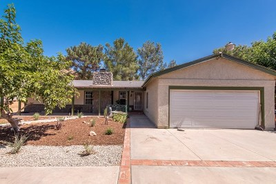 Acton, Canyon Country, Saugus, Santa Clarita, Castaic, Stevenson Ranch, Newhall, Valencia, Agua Dulce Single Family Home For Sale: 2848 Calmgarden Road