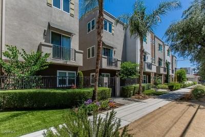 Valley Glen Single Family Home For Sale: 5656 Hazeltine Avenue