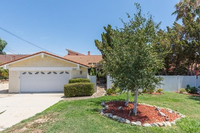 Chatsworth Single Family Home For Sale: 10516 Independence Avenue