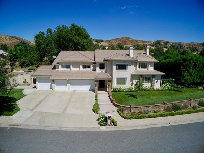 Simi Valley Single Family Home For Sale: 3179 Bianca Circle