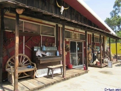 Shadow Hills Single Family Home For Sale: 10159 Sunland Boulevard