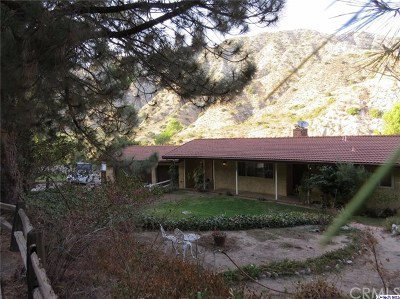 Tujunga Single Family Home For Sale: 4137 Big Tujunga Canyon Road