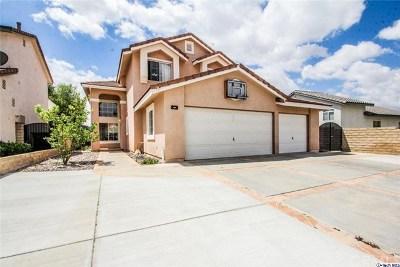 Saugus Single Family Home For Sale: 20234 Adriene Way