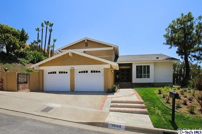 Sun Valley Single Family Home For Sale: 8066 Hollywood Way