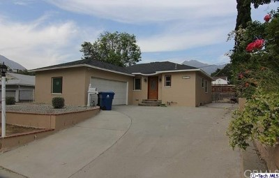 Sunland Single Family Home For Sale: 11024 Rhodesia Avenue