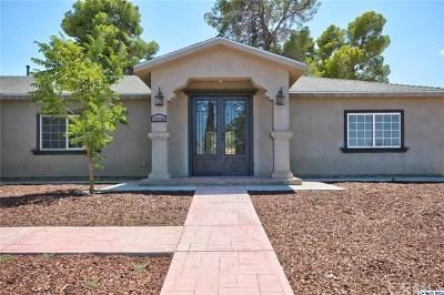 Pearblossom Single Family Home For Sale: 12136 E Avenue V12