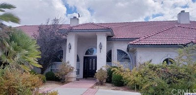 Redlands Single Family Home For Sale: 667 Golden West Drive