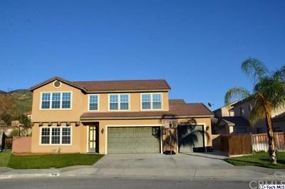 Hemet, San Jacinto Single Family Home For Sale: 1743 Tustin Court