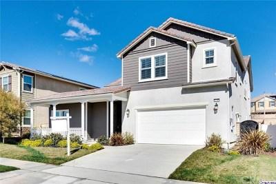Valencia Single Family Home For Sale: 22389 Copper Mountain Court