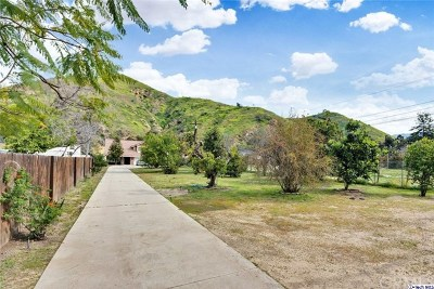 Sun Valley Single Family Home For Sale: 9653 La Tuna Canyon Road