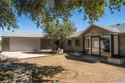 Palmdale Single Family Home For Sale: 161 Hacienda Drive
