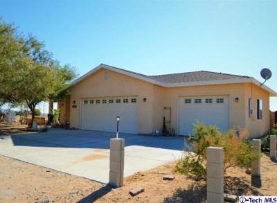 California City Single Family Home For Sale: 10240 Redwood Boulevard