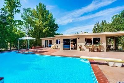 Topanga Single Family Home For Sale: 21428 Chagall Road