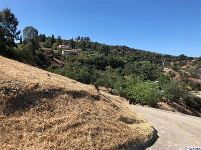 Woodland Residential Lots & Land For Sale: Topanga Canyon
