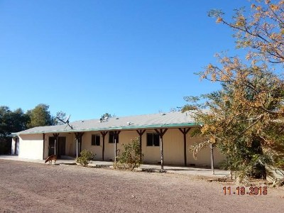 Newberry Springs Single Family Home For Sale: 48001 Silver Valley Road