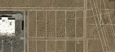 Victorville Residential Lots & Land For Sale: 395/Palmdale Road