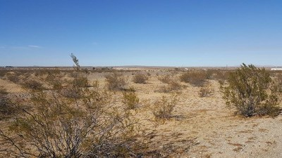 Helendale Residential Lots & Land For Sale: Corral Road