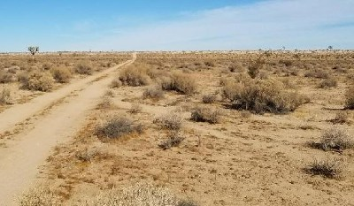 Helendale Residential Lots & Land For Sale: Buckthorne Canyon Road