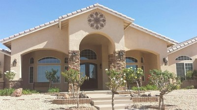 Apple Valley Single Family Home For Sale: 18549 Menahka Court