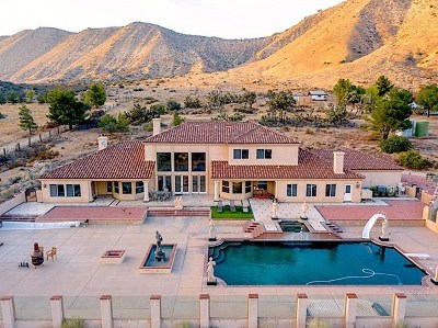 Phelan Single Family Home For Sale: 6260 Mountain Shadow Manor Lane