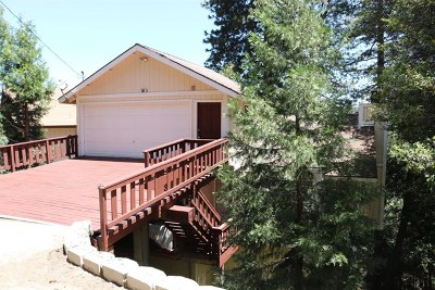 Crestline Single Family Home For Sale: 385 Wylerhorn Drive