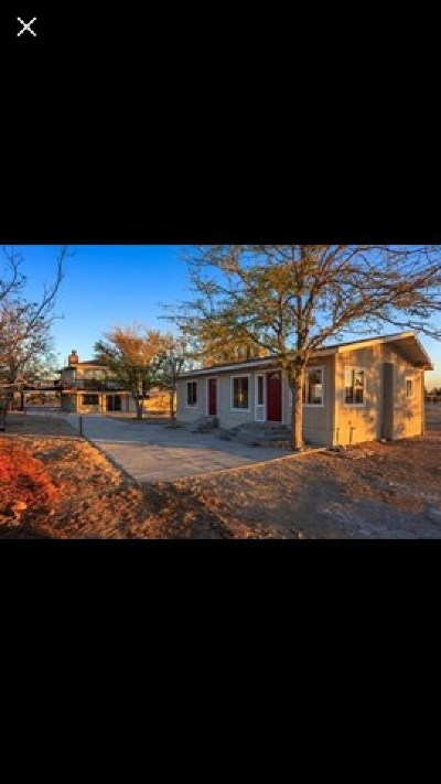 Lucerne Valley Single Family Home For Sale: 9835 Midway Avenue