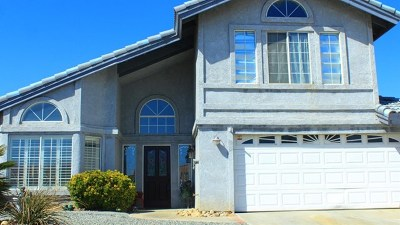 Victorville Single Family Home For Sale: 13675 Sea Gull Drive