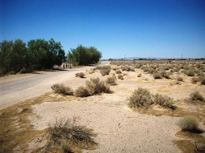 Newberry Springs Residential Lots & Land For Sale: Mini Ranch Row
