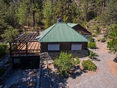 Wrightwood Single Family Home For Sale: 1667 Sparrow Road