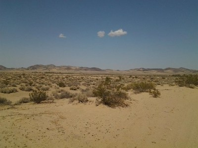 Newberry Springs Residential Lots & Land For Sale: Bedford Road