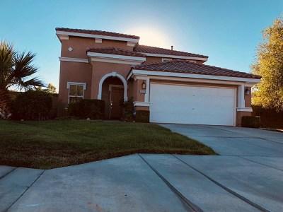 Lancaster Single Family Home For Sale: 45129 Parkview Lane