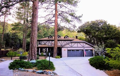 Wrightwood Single Family Home For Sale: 5776 Acorn Drive