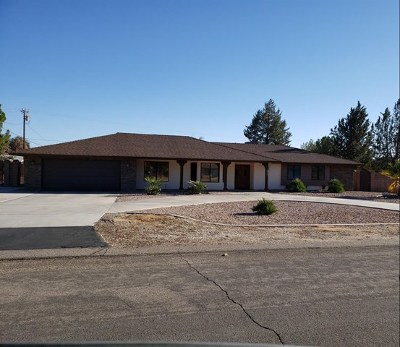 Apple Valley Single Family Home For Sale: 18995 Red Feather Road