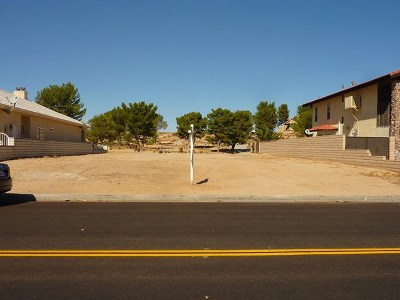 Helendale Residential Lots & Land For Sale: 27654 Silver Lakes Parkway