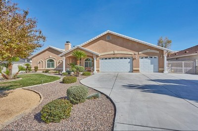 Apple Valley Single Family Home For Sale: 12425 Palomino Lane