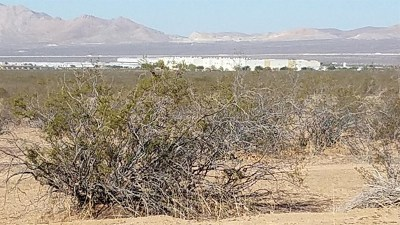 Apple Valley Residential Lots & Land For Sale: Central #2 Road