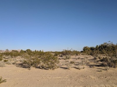 Lucerne Valley Residential Lots & Land For Sale: Sunrise Road