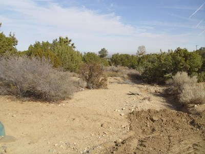 San Bernardino County Residential Lots & Land For Sale: Hollister Road