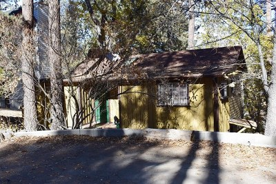 Wrightwood Single Family Home For Sale: 1088 Mockingbird Road