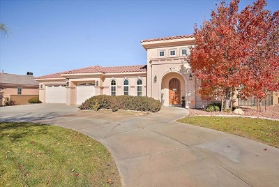 Apple Valley Single Family Home For Sale: 17862 Mana Road
