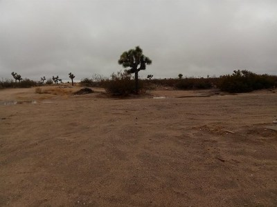 Adelanto Residential Lots & Land For Sale: Boquina Street