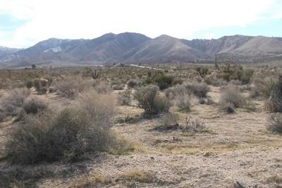 San Bernardino County Residential Lots & Land For Sale: High Road