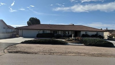 Hesperia Single Family Home For Sale: 7744 Paisley Avenue