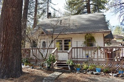 Wrightwood Single Family Home For Sale: 1783 Betty Street