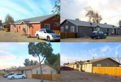 Adelanto Multi Family Home For Sale: 11346 Chamberlaine Way