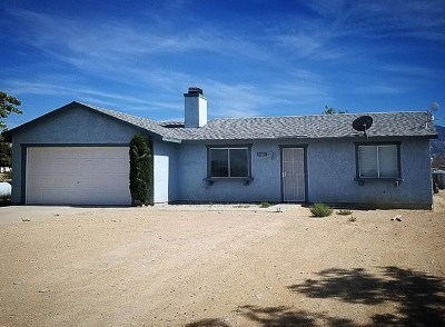 Lucerne Valley Single Family Home For Sale: 35025 El Dorado Street