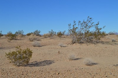 Newberry Springs Residential Lots & Land For Sale: Hampton Drive