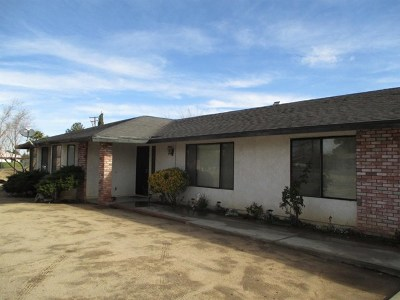 Hesperia Single Family Home For Sale: 8919 Evergreen Avenue